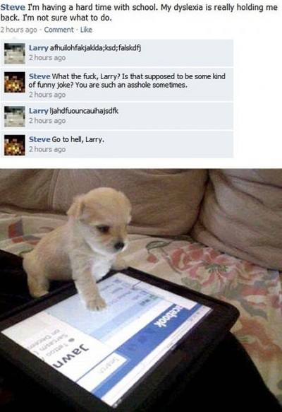 funny-pictures-puppy-on-facebook
