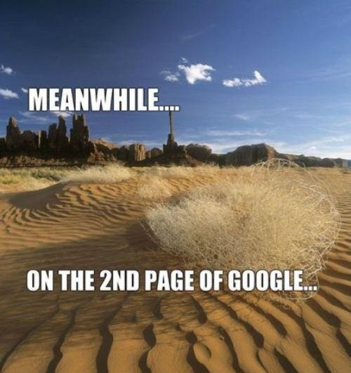 funny-pictures-second-page-of-google