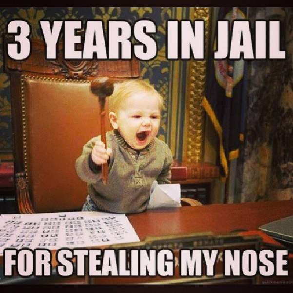 funny-pictures-stolen-nose