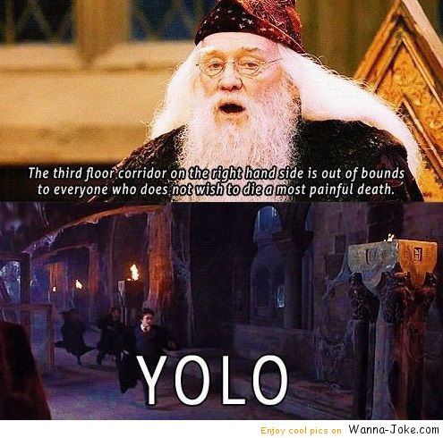 funny-pictures-yolo-harry-poter