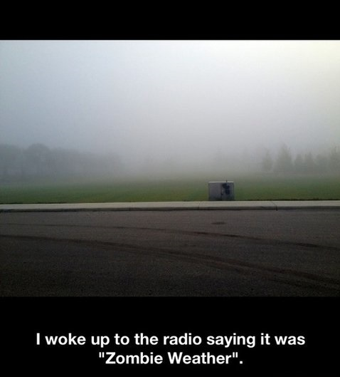 funny-pictures-zombie-weather