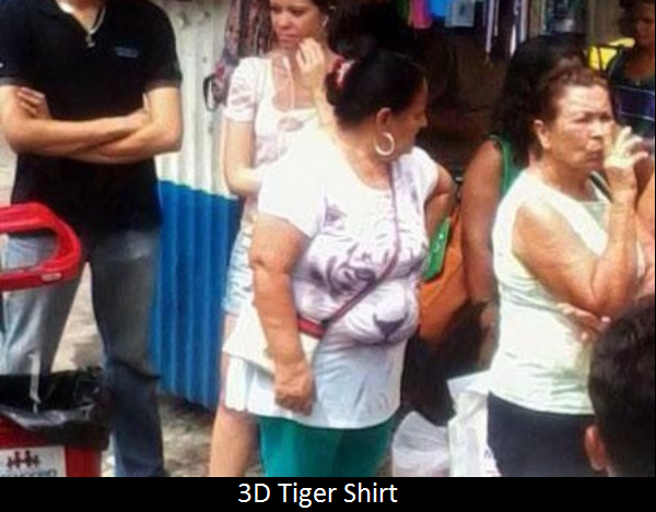 funny-picture-3d-tiger-shirt