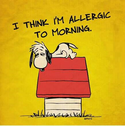 funny-picture-allergic-to-morning
