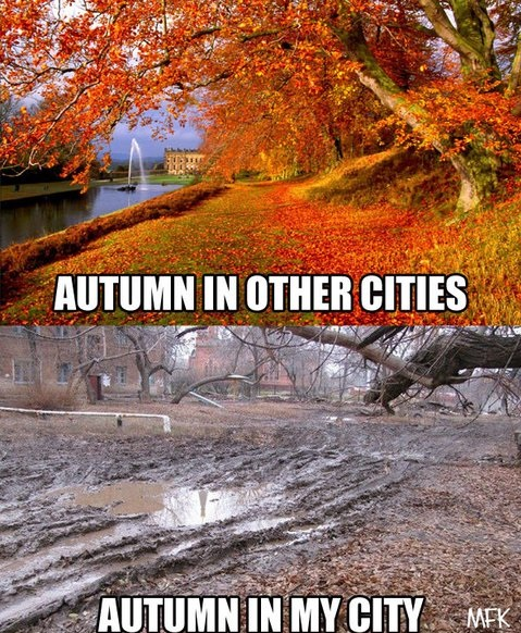funny-picture-autumns-my-city-others