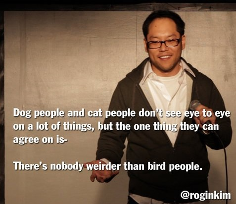 funny-picture-cats-dogs-birds-people