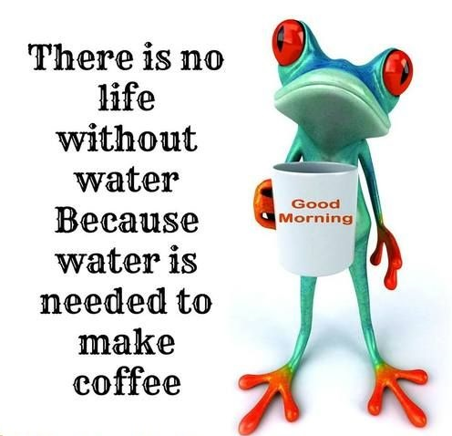 funny-picture-coffee-water-morning