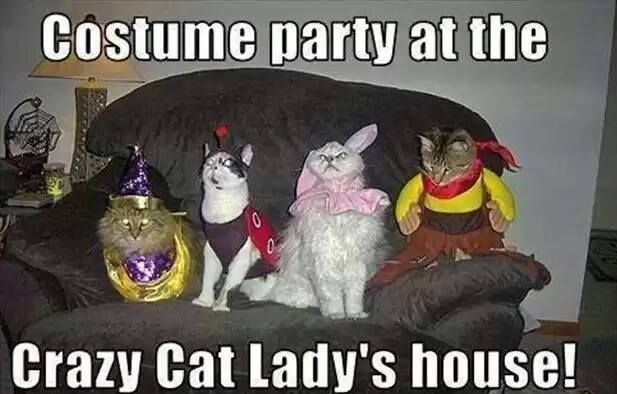 funny-picture-cotume-party-crazy-cat-lady