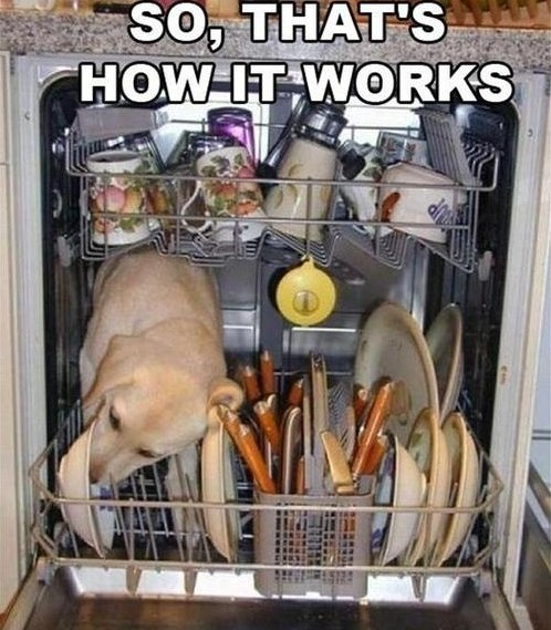 funny-picture-dish-wash-works
