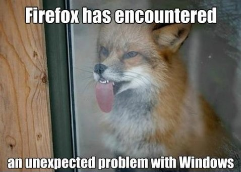 funny-picture-firefox-windows-fox