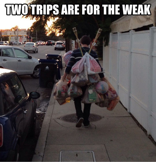funny-picture-groceries-one-trip-bags