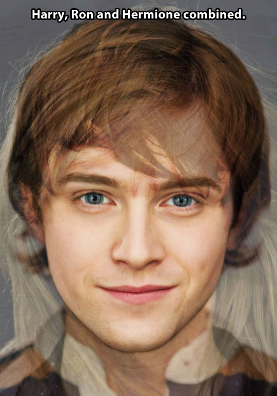 funny-picture-harry-ron-hermione-combined
