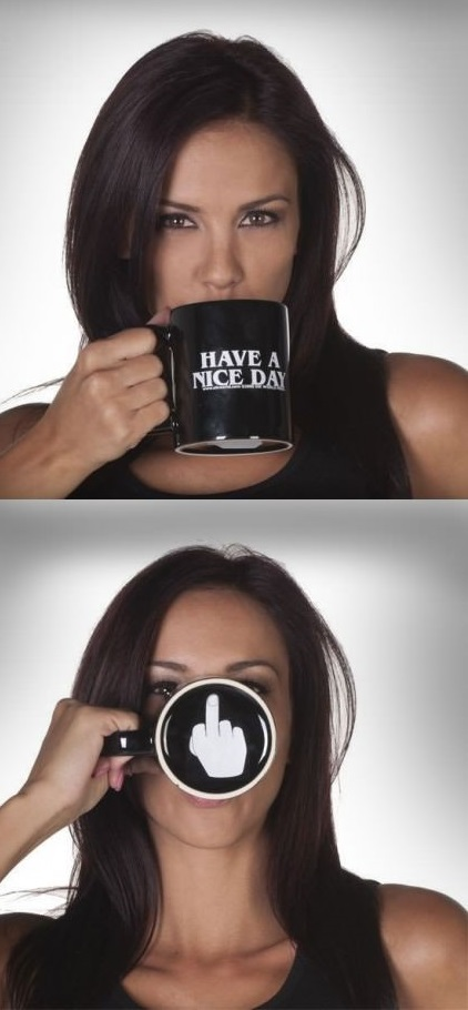 funny-picture-have-a-nice-day-cup-fuck-you