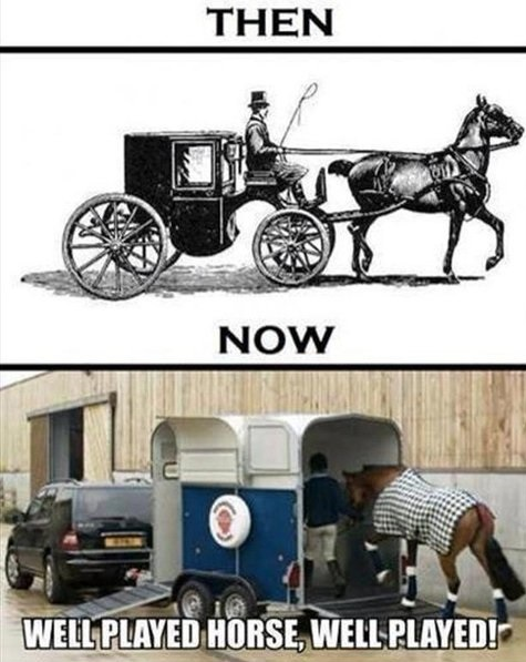 funny-picture-horse-then-now