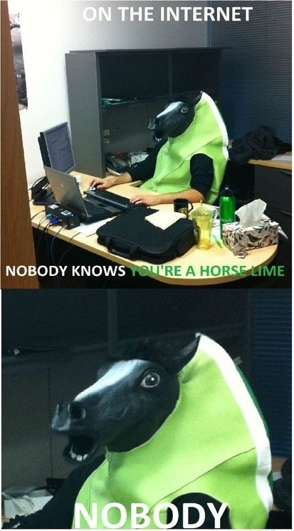 funny-picture-internet0horse-nobody-knows