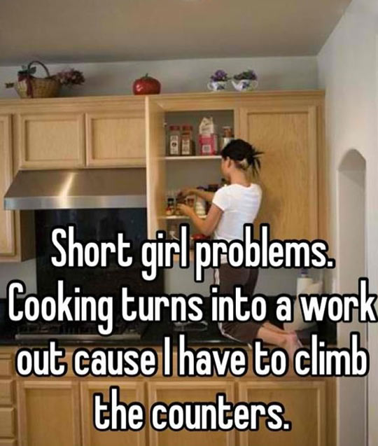 funny-picture-kitchen-short-girl-climb