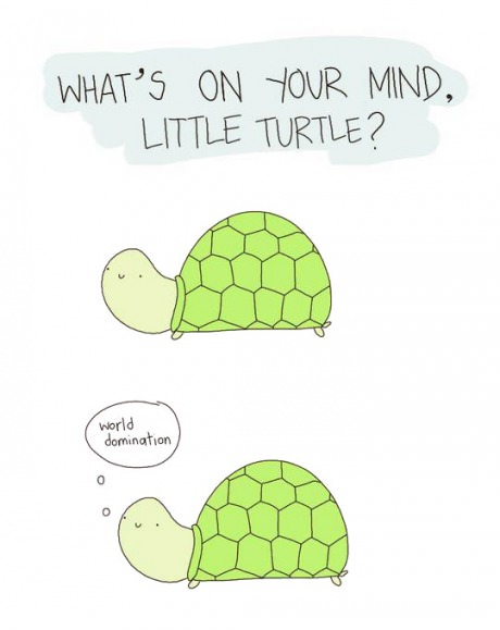funny-picture-little-turtle-world-domination