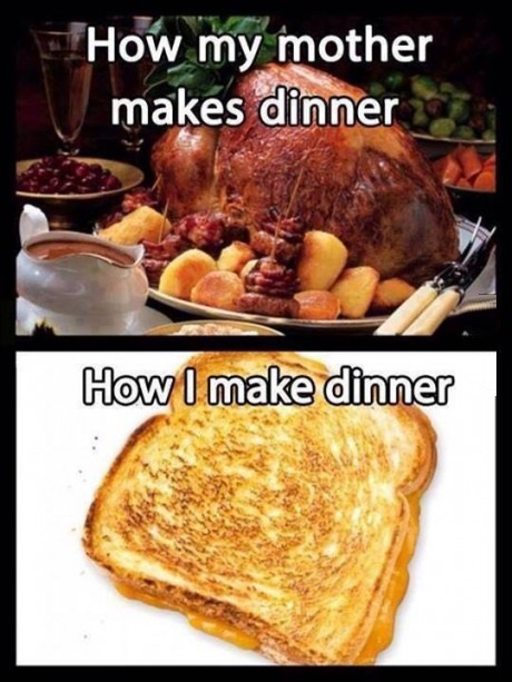 funny-picture-my-dinner-mothers-dinner