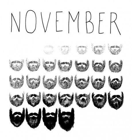 funny-picture-nivermber-beard