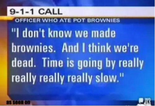 funny-picture-pot-brownies