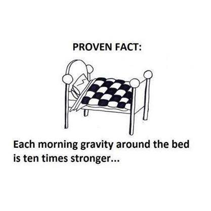 funny-picture-proven-fact-bed