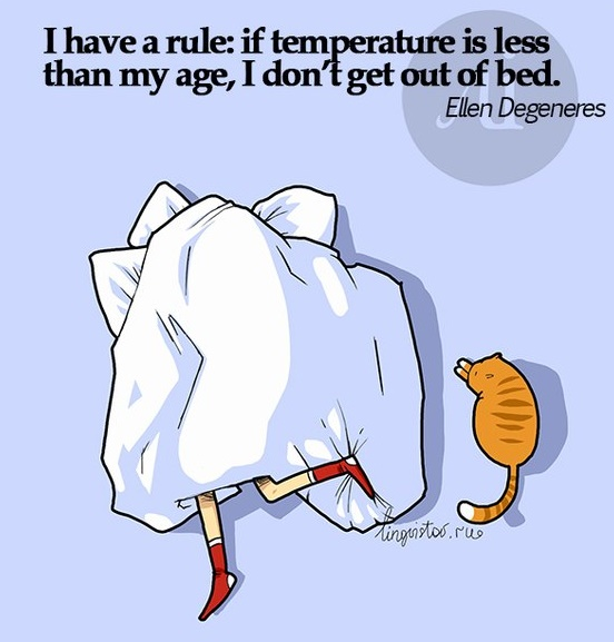 funny-picture-rule-temperature-bed