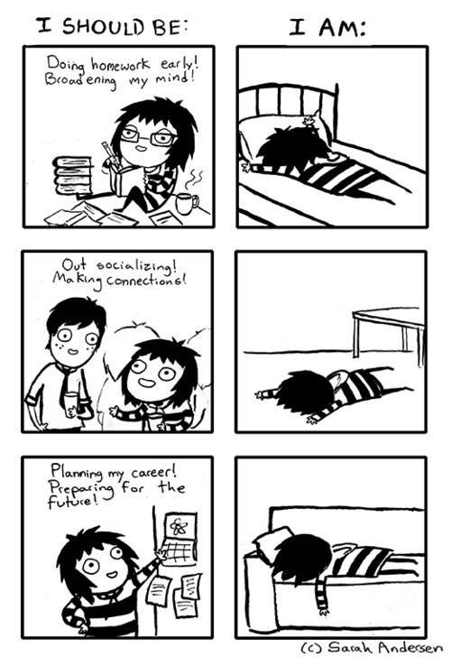 funny-picture-sarahseeandersen-should-be