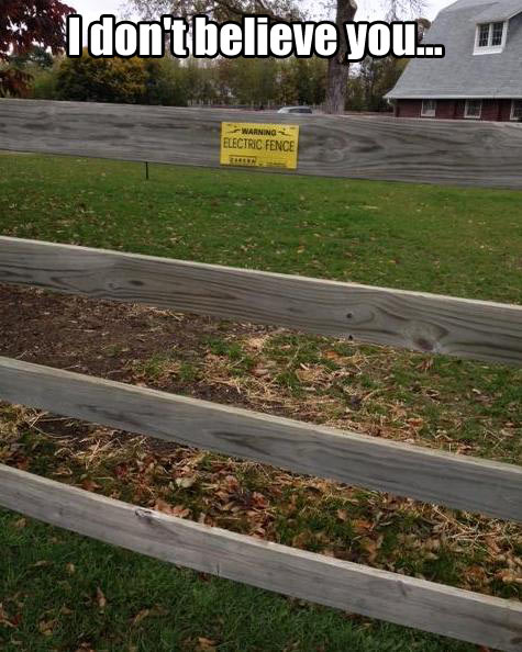 funny-picture-sign-electric-fence-wood-warning