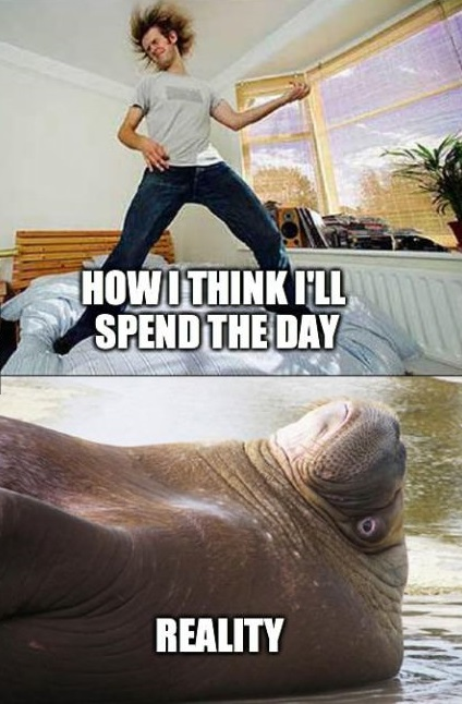 funny-picture-spend-day-expectation-reality