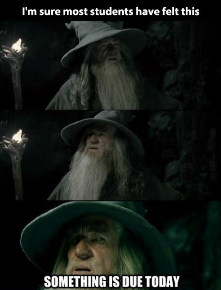 funny-picture-students-gandalf