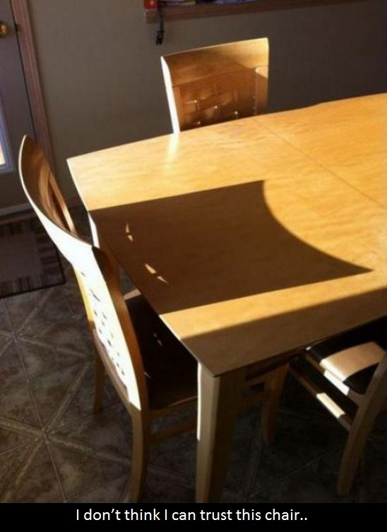 funny-picture-suspicious-chair