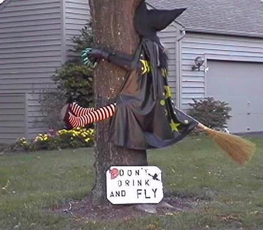 funny-picture-witch-sign-flying-broom