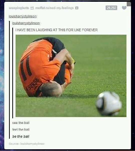 funny-picture-be-the-ball