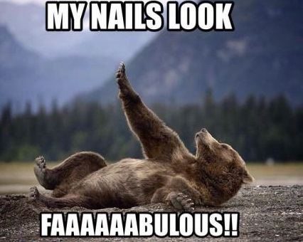 funny-picture-bear-nails-fabulous