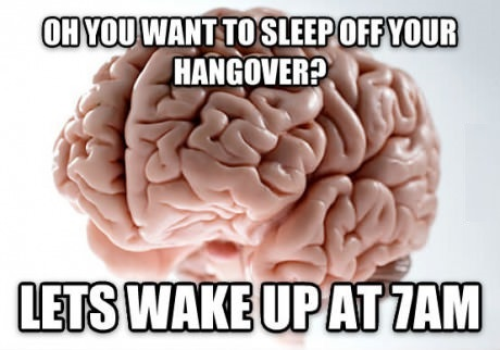 funny-picture-brain-hangover