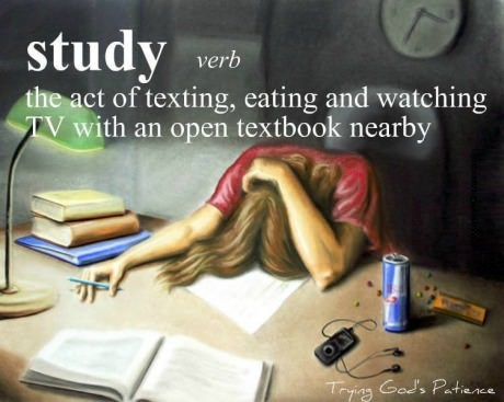 funny-picture-definition-of-study