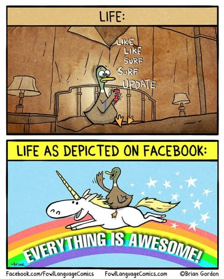 funny-picture-duck-facebook-real-life
