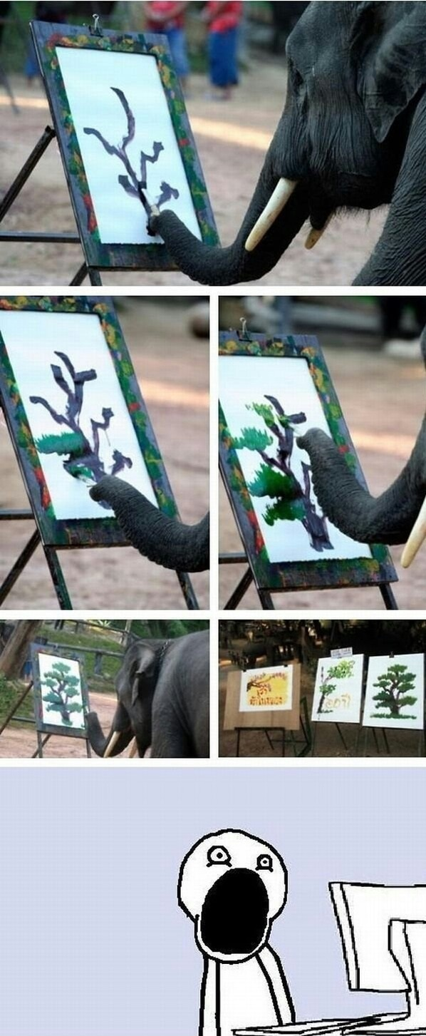 funny-picture-elephant-painting