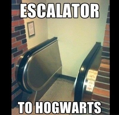 funny-picture-escalator-to-hogwarts