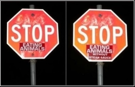 funny-picture-fixed-stop-eating-animals