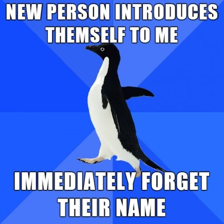 funny-picture-forget-name-pinguin
