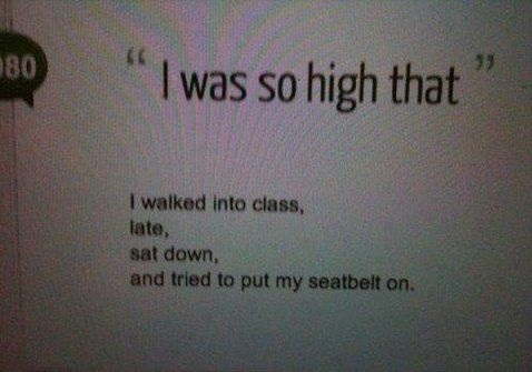 funny-picture-high-seatbelt