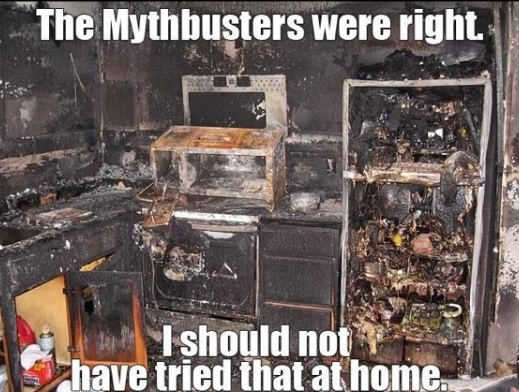 funny-picture-mythbusters-were-right