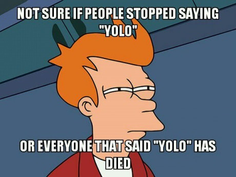 funny-picture-not-sure-yolo-people