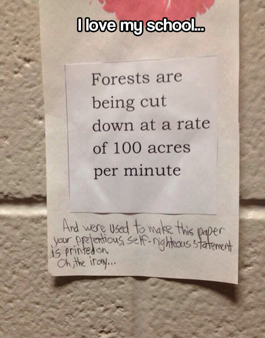 funny-picture-note-forests-paper-written