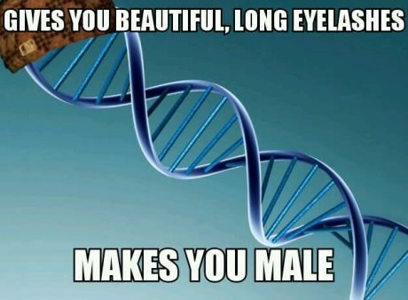 funny-picture-scumbag-dna-eyelashes-male