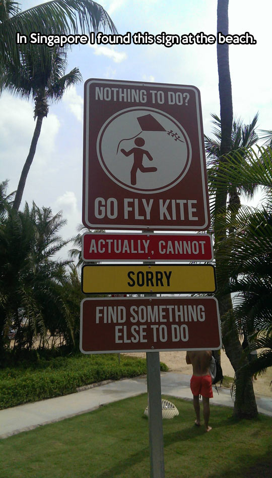 funny-picture-sign-fly-kite-forbidden