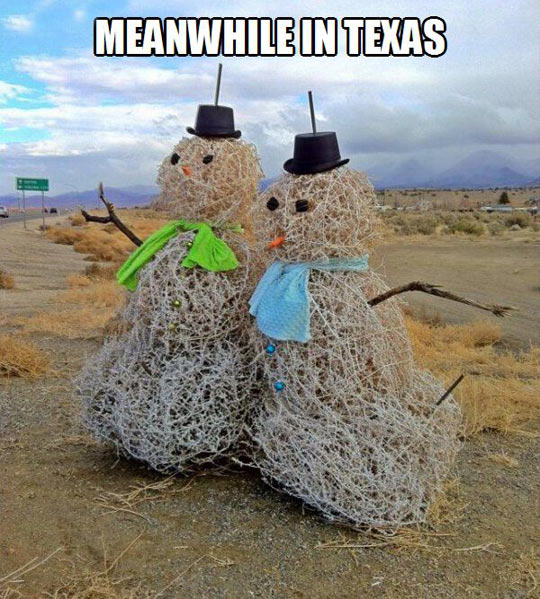 funny-picture-tumbleweed-men-route-desert