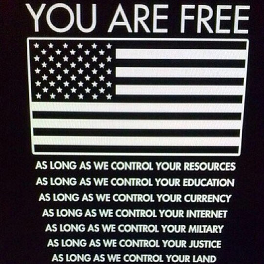 funny-picture-usa-flag-freedom-life-control