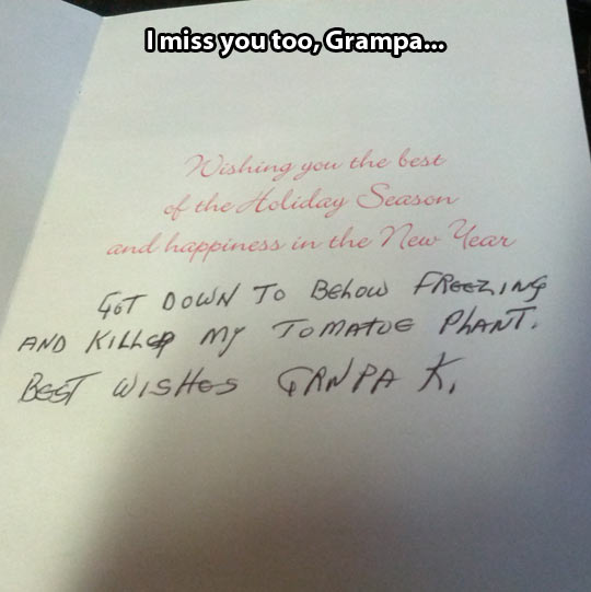 funny-picture-Christmas-card-grandpa-letter