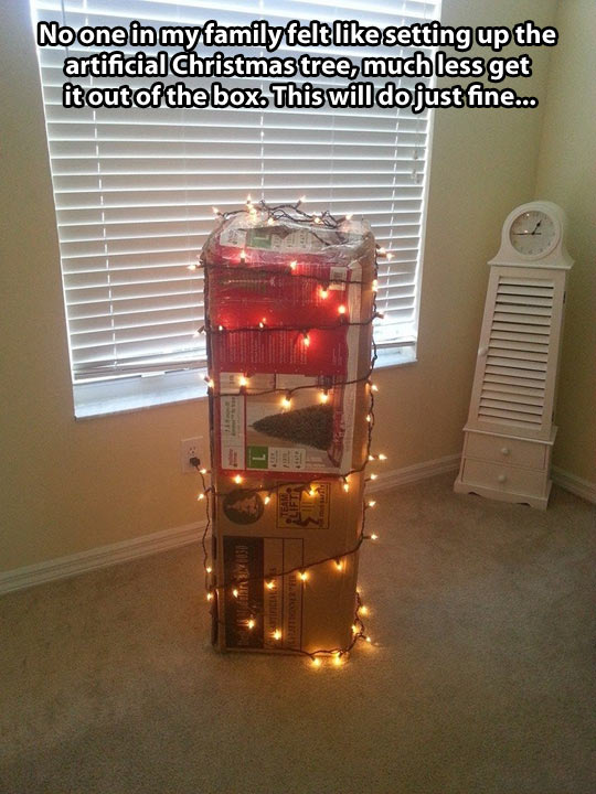 funny-picture-Christmas-tree-lights-box-decoration